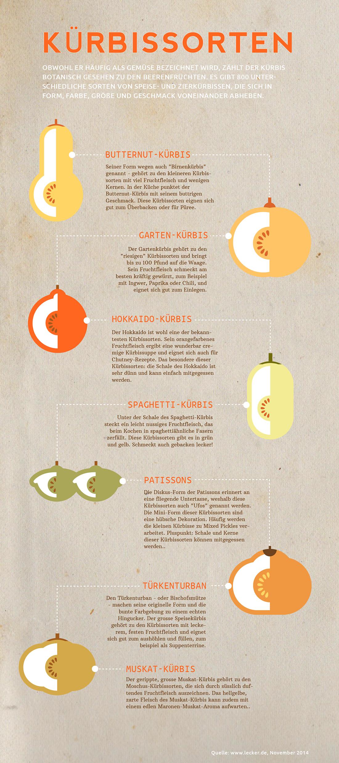 illustration icons infografiken k rbissorten. Black Bedroom Furniture Sets. Home Design Ideas