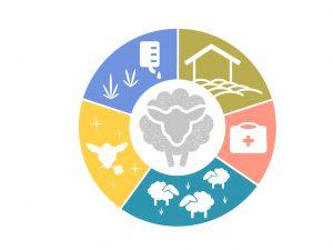 Bündnis für nachhaltige Textilien-5 freedoms