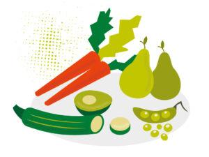Stiftung Aktiv – Ernährung